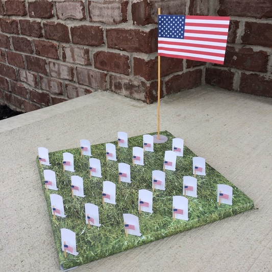 Memorial Day Activities - National Cemetery Diorama from GrowingLittleLeaves.com