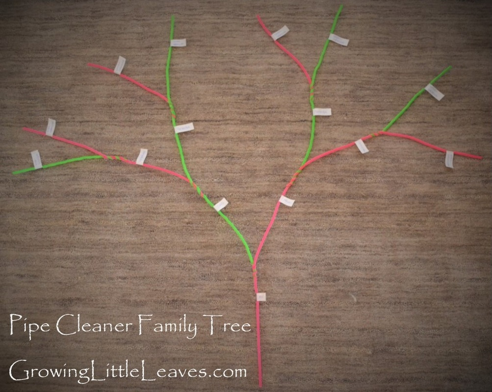 Pipe Cleaner Family Tree from GrowingLittleLeaves.com