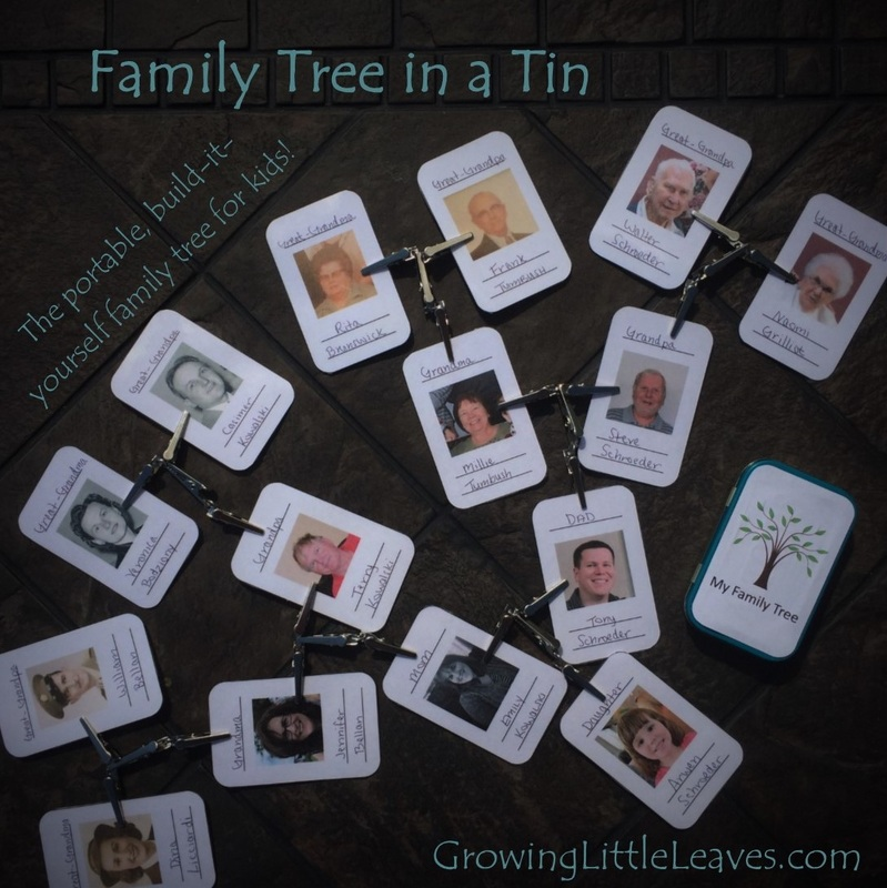 Family Tree in a Tin from GrowingLittleLeaves.com