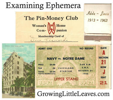 Examining Ephemera // GrowingLittleLeaves.com