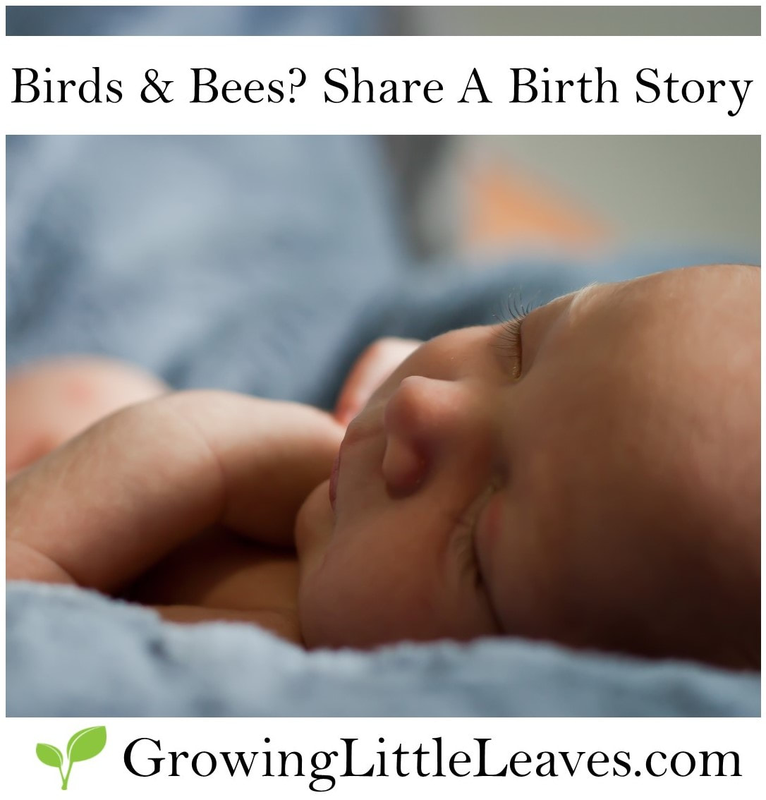 Birds & Bees? Share A Birth Story // GrowingLittleLeaves.com